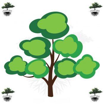 árbol genealógico niños color