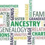 cómo encontrar árbol genealógico