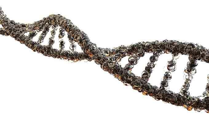 ADN, doble hélice