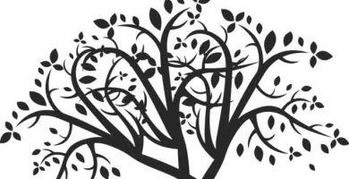 Árbol Genealógico Sin Fotos