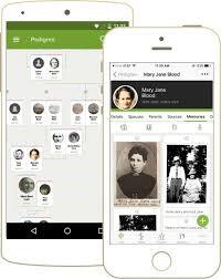 Aplicación para árbol genealógico