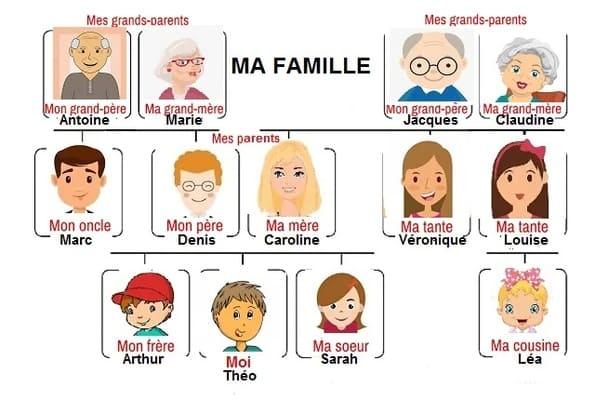 árbol genealógico en francés