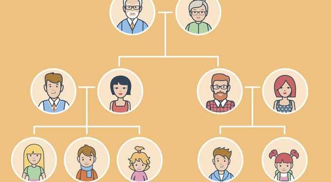árbol genealógico sin nombres
