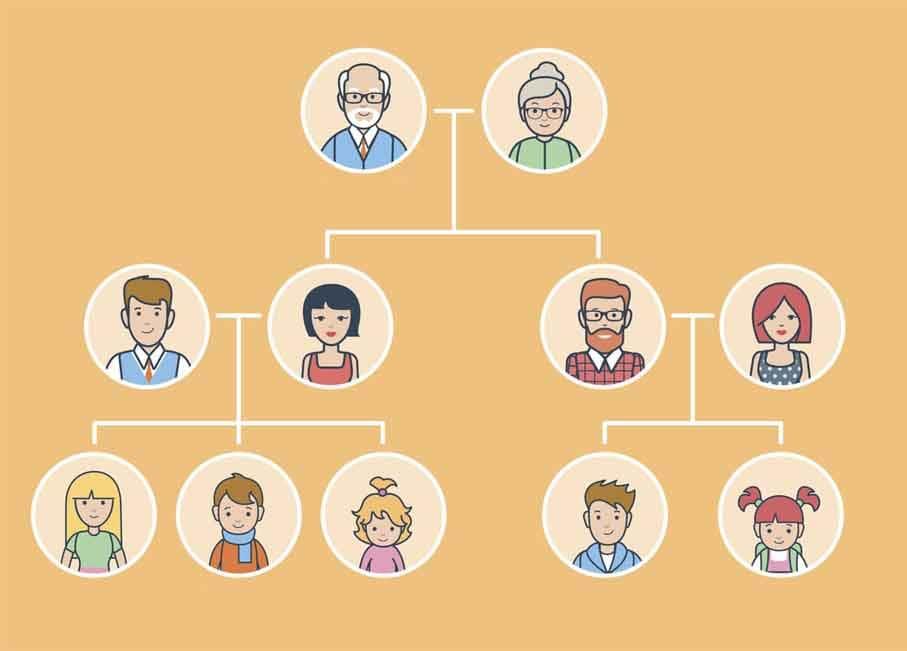 qué lleva un árbol genealógico